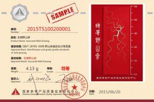 Premium Grade 5B Class NGPQSIC Certified Chinese Wild Ginseng